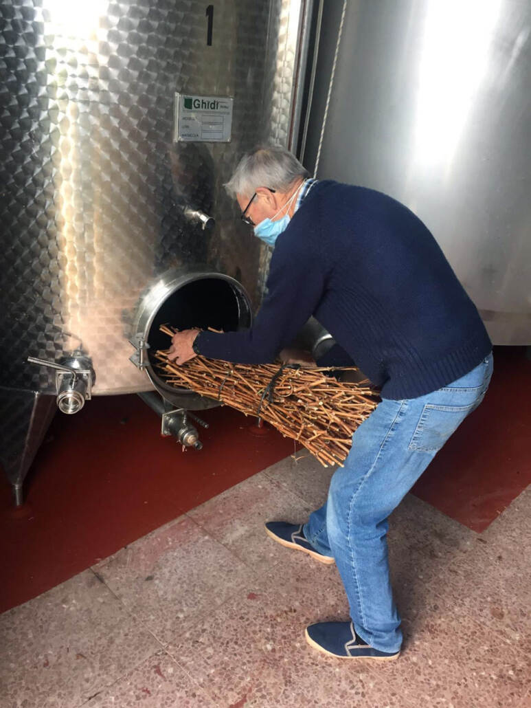 Our Hilario (retired now) preparing our traditional gavilla made of vine shoots for his 20th harvest